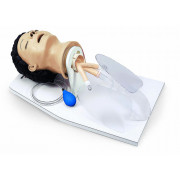 Adult Airway Management Trainer with Stand